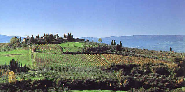 Chianti Wine Road in Tuscany among vineyards and sweet hills