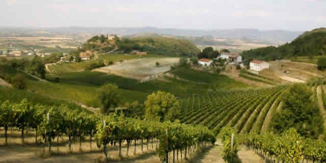 Discover the Euganean Hills its vineyards and medieval towns