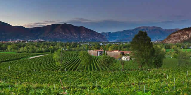 The beautiful wine road in Franciacorta in Lombardy