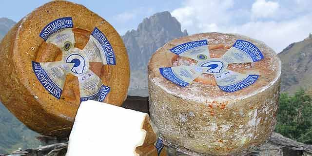 Castelmagno, discover all about this great Italian cheese