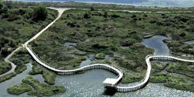 The Po River Delta A Beautiful Unique Natural Environment - Po river