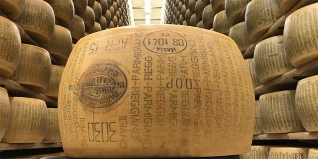 Parmigiano Reggiano DOP the world-wide famous Italian cheese