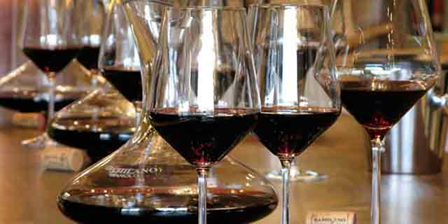 Barolo, the king of wines, a great worldwide famous red wine - Pic 7